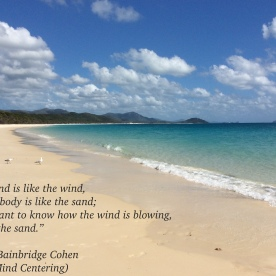 Mind:Wind Body:Sand