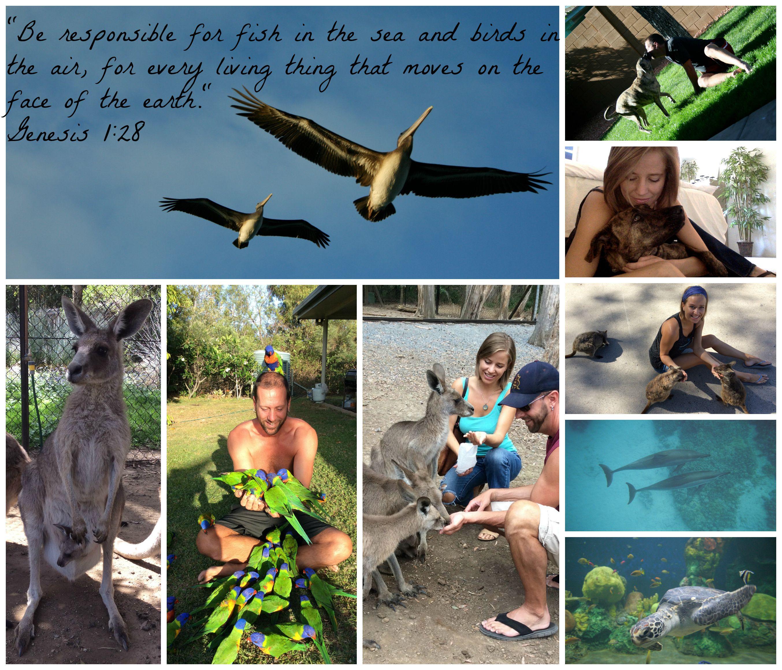 PicMonkey Collage 3  827f414e19